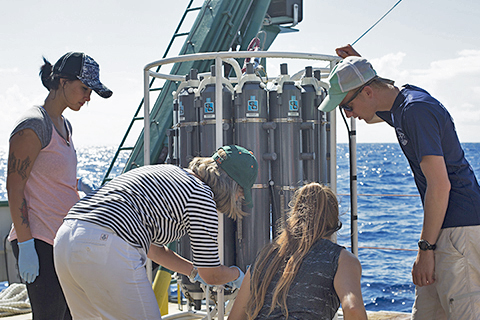 collecting seawater samples